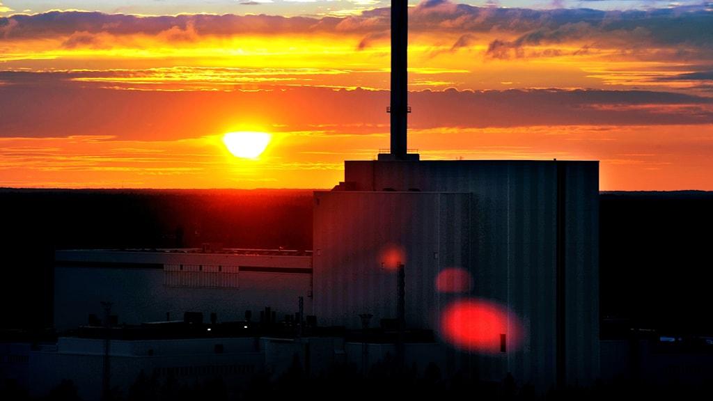Forsmarks kärnkraftverk i solnedgång.