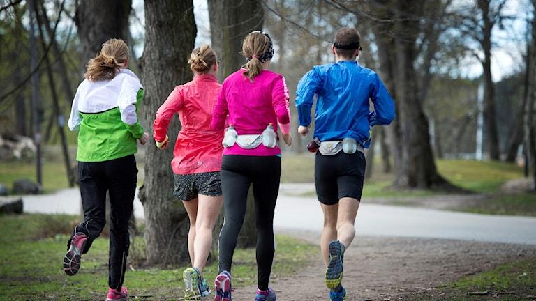 Fyra joggare i skogen