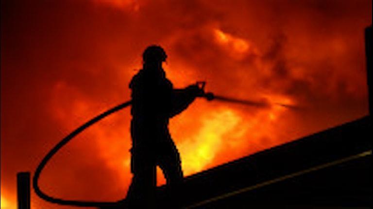 Brandman framför en eldsvåda. Foto:Paul Madej /Scanpix.