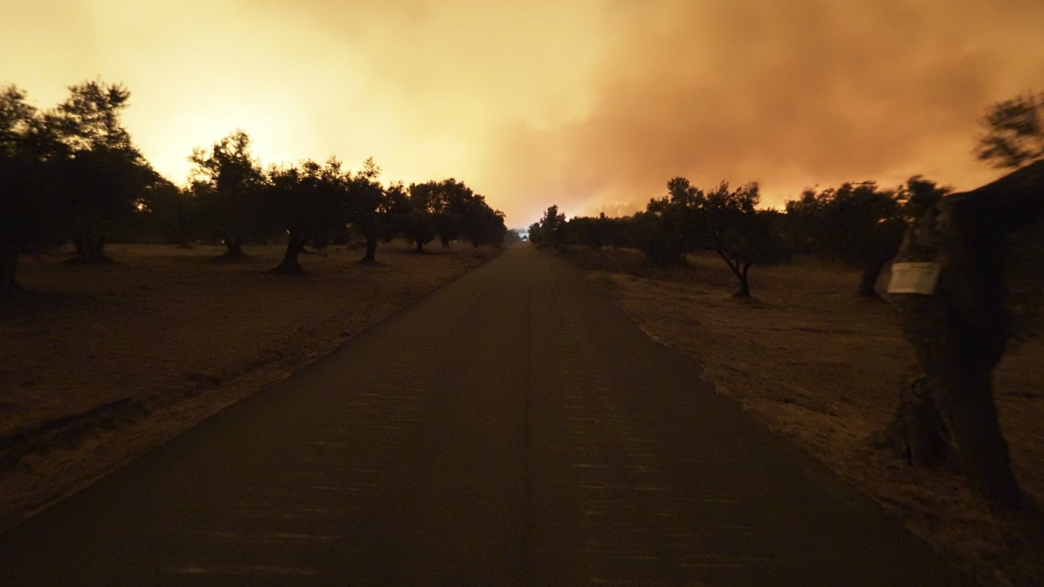 Skogsbrand på ön Evia i Grekland den 5 augusti 2021.