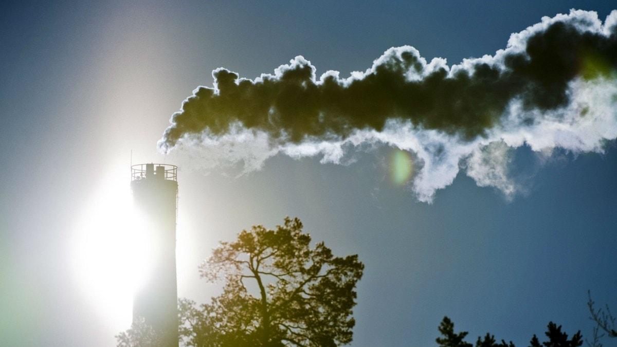Rök bolmar ut från en skorsten. Foto: Henrik Montgomery/Scanpix