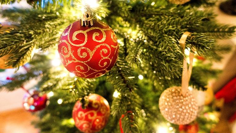 Närbild på en julgransgren samt några julgranskulor.