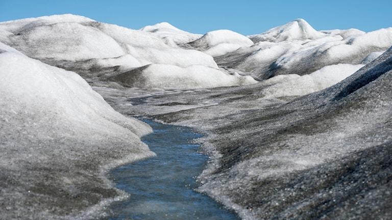En vattenbäck flyter mellan glaciärer.