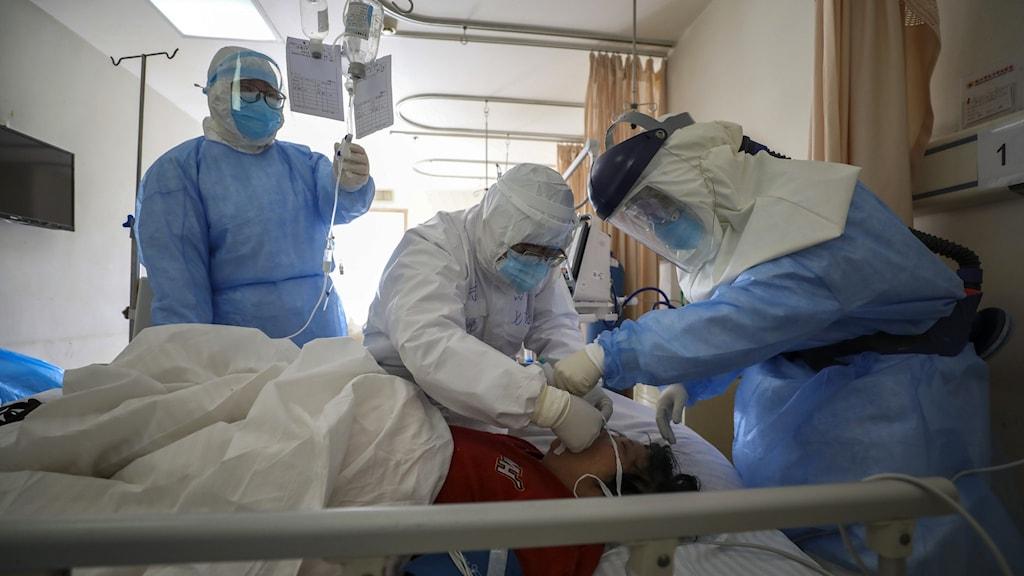 Tre sjukvårdare iklädda infektionsmundering vårdar en patient liggandes i en sjukhussäng.