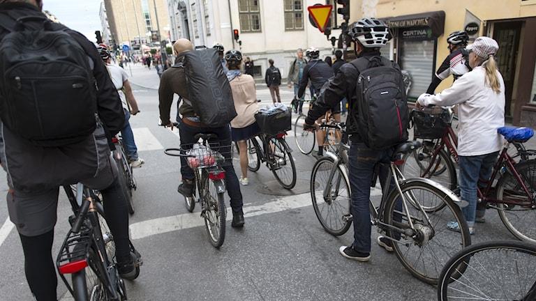 Flera cyklister väntar på grönt i en korsning.