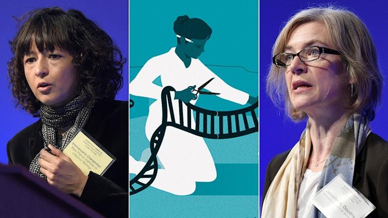 Två kvinnor samt en illustration.