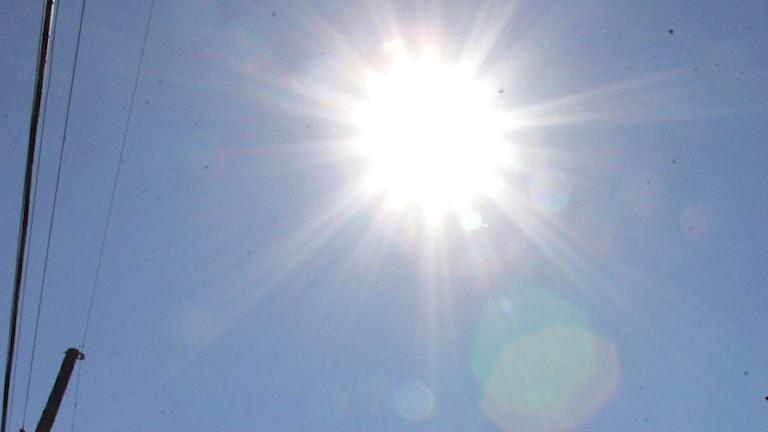 Stark bländande sol över blå himmel