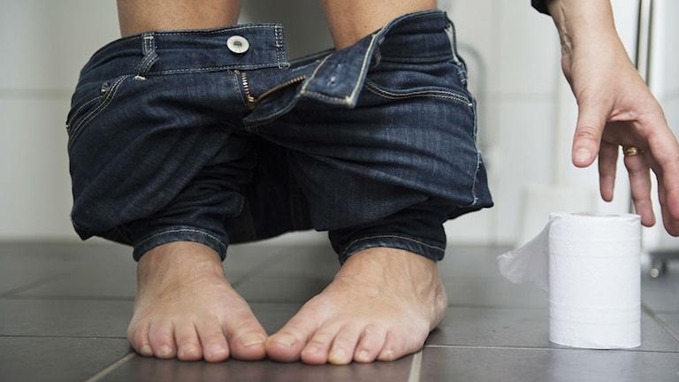 Magsjukeparasiten kan få den drabbade att behöva springa på toaletten ofta. Foto: Foto: Fredrik Sandberg / TT