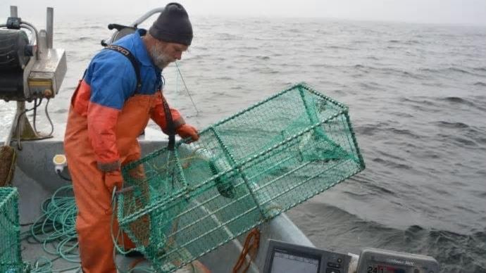 Yrkesfiskaren Glenn Fridh med en bur han använder för att fånga fisk med.