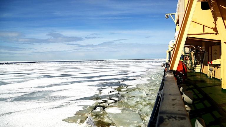 Isbrytaren Oden på väg från Norge