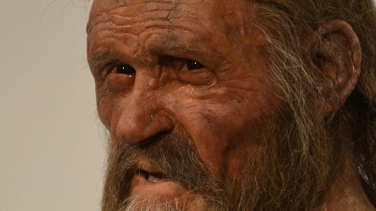 Rekonstruktion av Ötzi