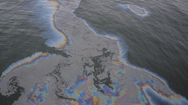 Oljeutsläpp i Östersjön. Foto: Kustbevakningen/TT