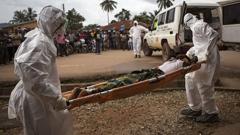 En man förs bort med ambulans i Kenema, Sierra Leone.