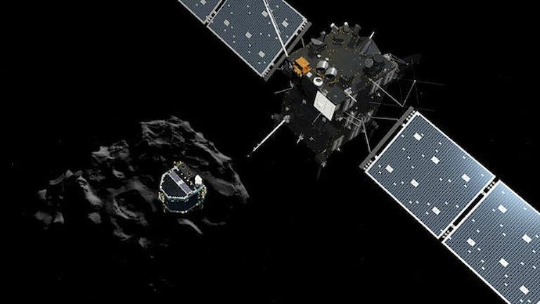 Landaren Philae frigör sig från Rosetta och påbörjar sin färd mot kometen 67P. Foto: ESA