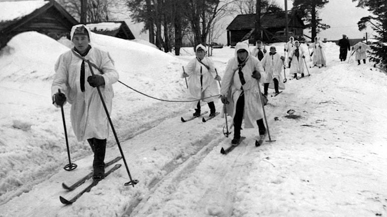 Finska skidtrupper synas under framryckning.