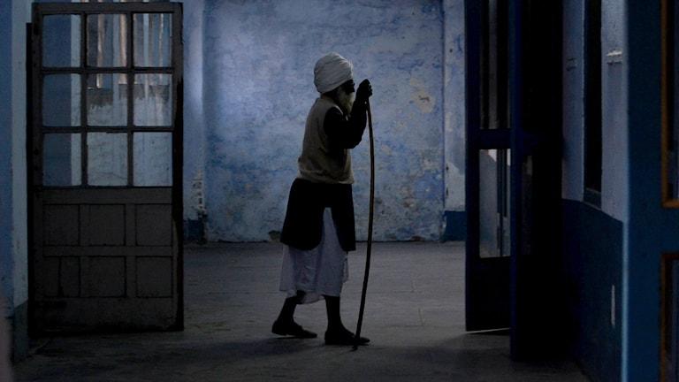 Indierna riktar blickarna mot Sverige för att utveckla sin forskning om åldrande. Foto: Sanjeev Syal/AP/TT