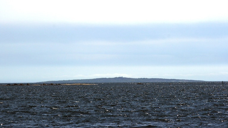The brackish water of the Baltic has just seen an influx of saltier water from the North Sea. File photo: CC SA 3.0