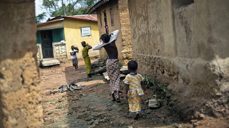 Meliandou i Guinea är den by där man tror att ebolaepidemin i Västafrika har sitt ursprung. Foto: AP Photo/Jerome Delay/TT