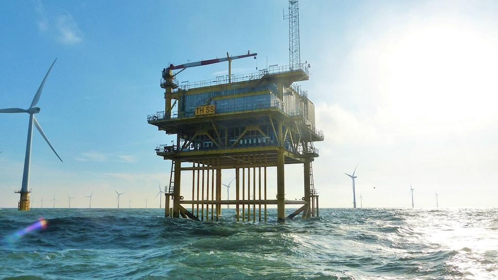 En vindkraftsanläggning står på långa ben som sticker upp ur havet.