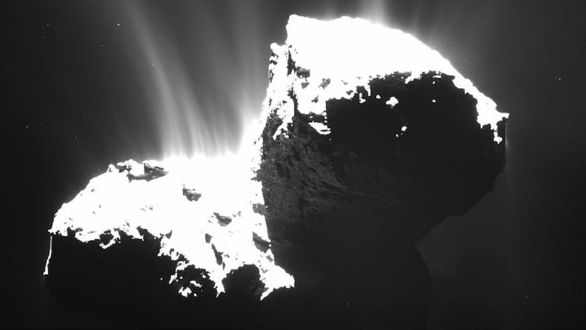 Bilden är tagen 30 kilometer från kometen 67P/Churyumov-Gerasimenko. Den är medvetet överexponerad för att visa gas och damm som strömmar bort från kometen. Foto: ESA/Rosetta/MPS for OSIRIS Team MPS/UPD/LAM/IAA/SSO/INTA/UPM/DASP/IDA