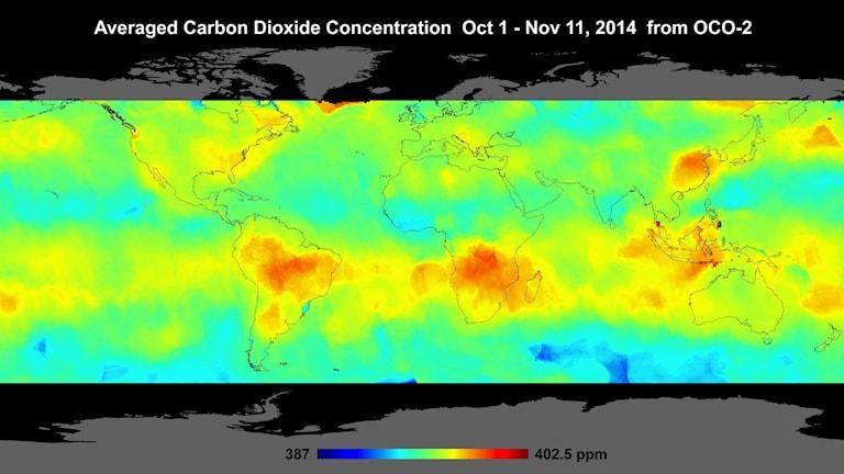 En världskarta där olika koncentrationer av koldioxid i atmosfären visas med olika färger.