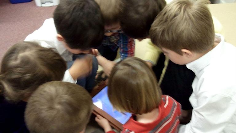 Sju barn sitter runt en läsplatta och tittar ned på den.