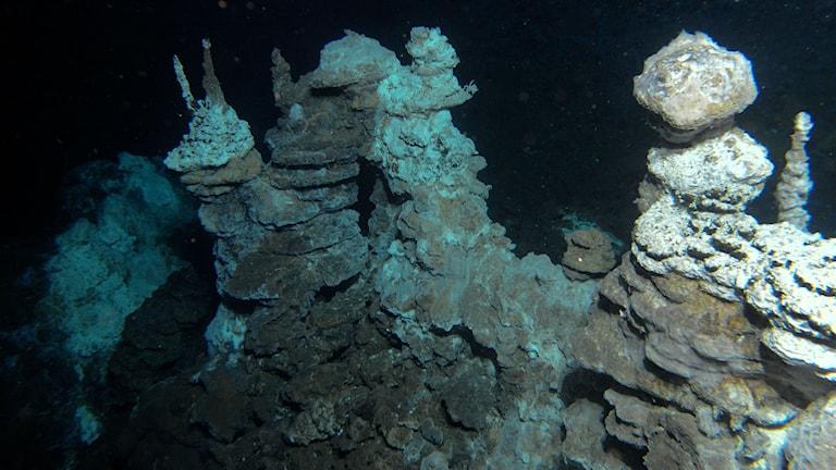 Formationer där hett vatten från jordens inre kommer ut. Foto: Centre for Geobiology, University of Bergen, R.B. Pedersen