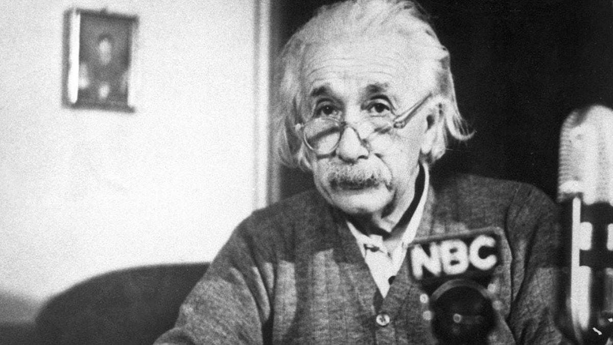 Albert Einstein. Foto: TT