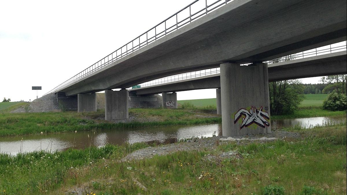 Grönt område och en å under bron. Foto: Tove Nordén/SR
