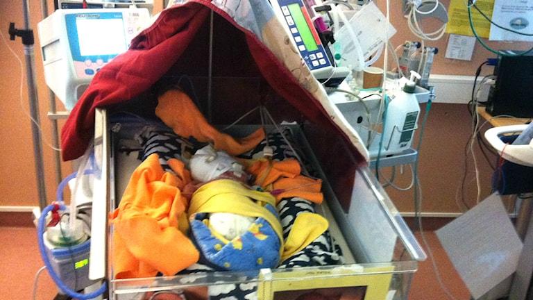 För tidigt barn på sjukhus. Foto: Johan Bergendorff/SR