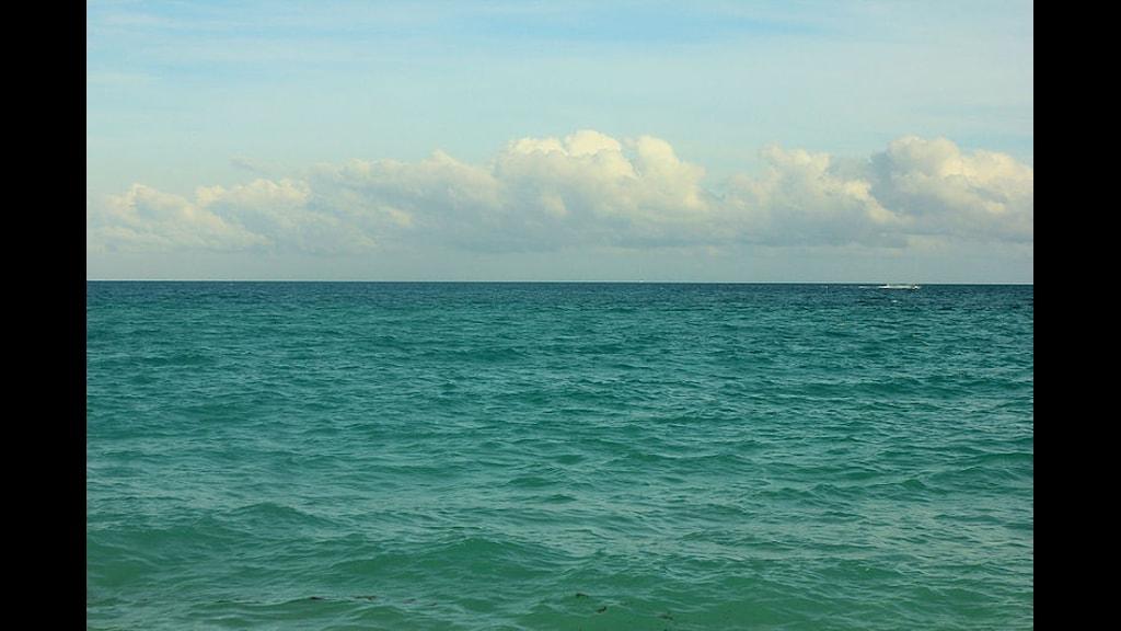 Utsikt från South Beach, Miami. Foto: Yinan Chen. Public Domain.