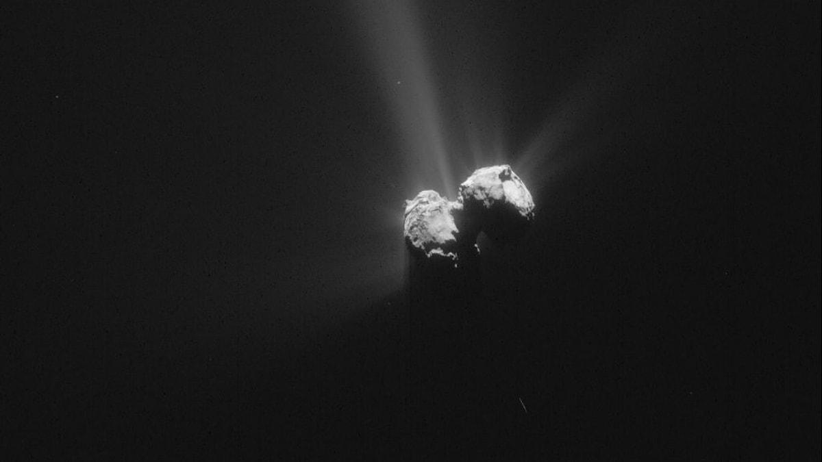 Kometen 67P den 6 augusti 2015 (bilden är beskuren). Foto:ESA/Rosetta/NAVCAM - CC BY-SA IGO 3.0