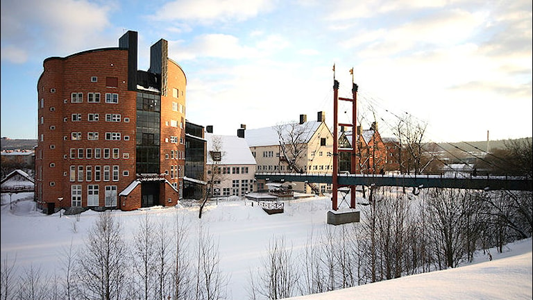 Mittuniversitetets campus i Sundsvall. Foto: Public Domain.