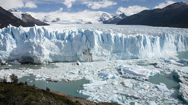 Den branta fronten på en av Patagoniens glaciärer. Foto: Luca Galuzzi (CC BY-SA 2.5)