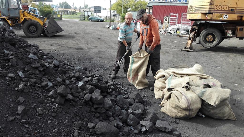 Polska arbetare lastar stenkol i säckar.Foto: Marcus Hansson/SR