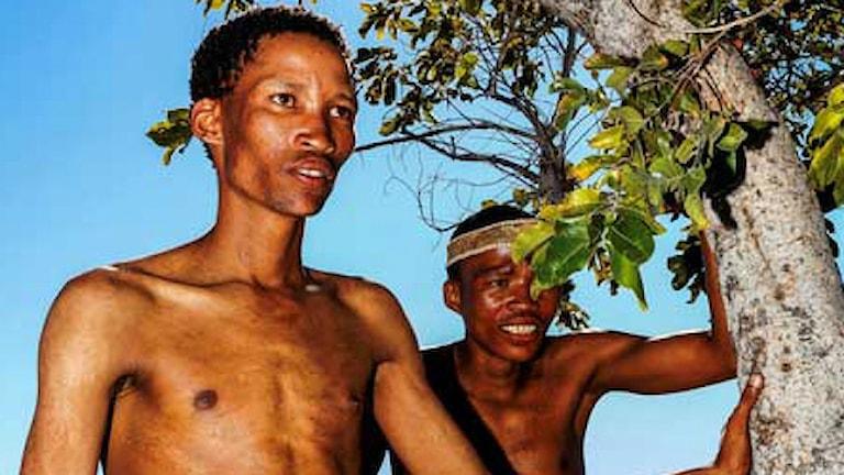 Sanfolket i Namibia sover lika länge som oss. Foto: Josh Davimes