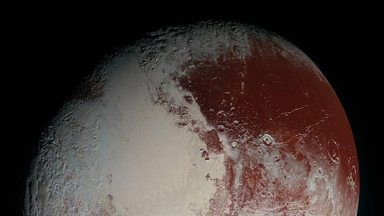 Dvärgplaneten Pluto. Foto: NASA/JHUAPL/SwRI