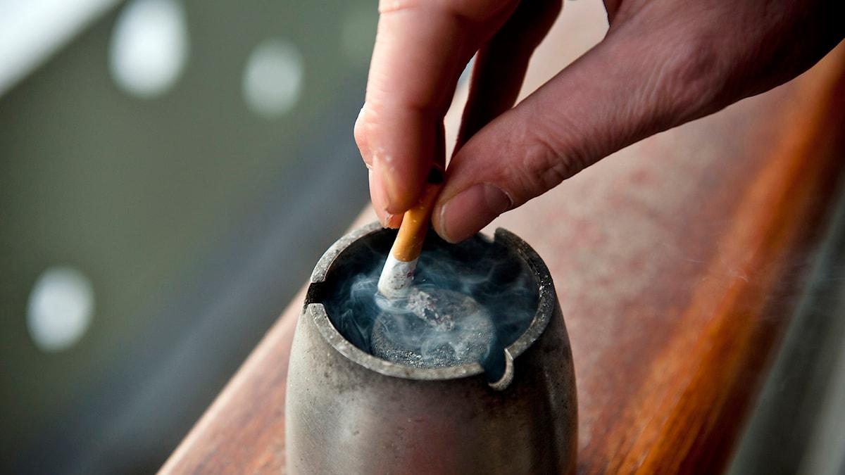Någon fimpar en cigarett. Foto: TT