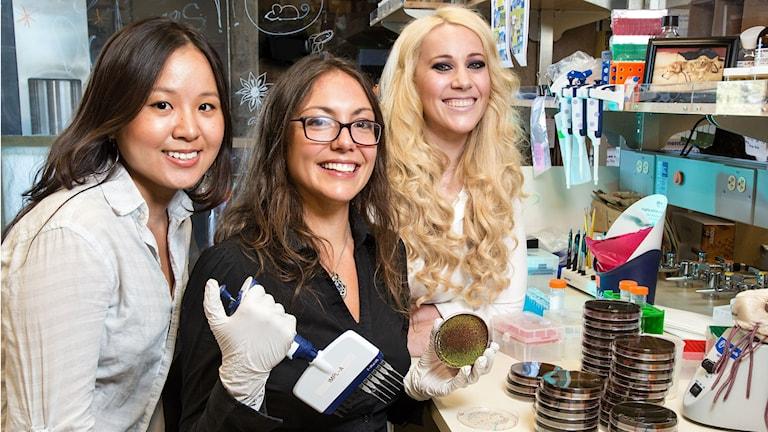 Tre glada forskare i sitt lab tittar mot kameran. Foto: Salk Institute