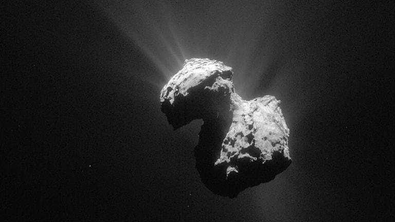 Kometen liknar en stor stenklump. Foto: ESA/Rosetta/NAVCAM, CC BY-SA IGO 3.0