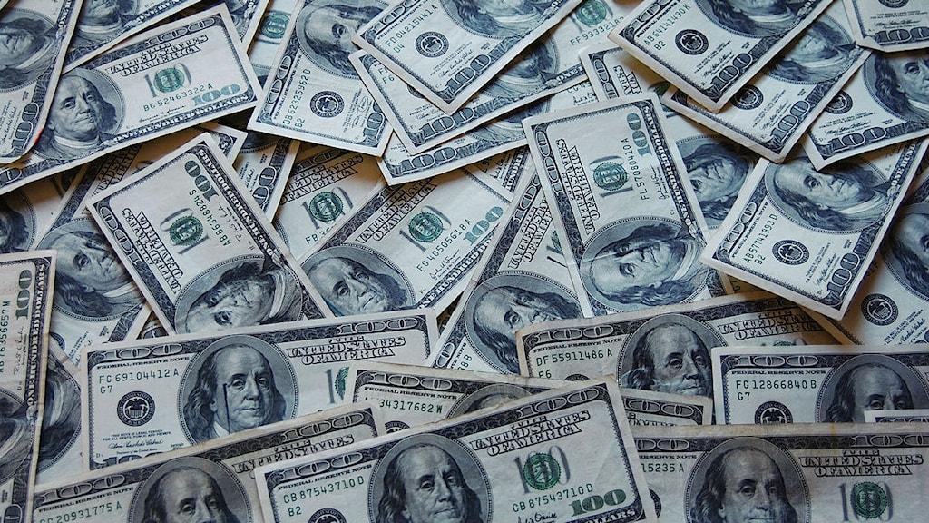 Amerikanska dollar. Foto: Jericho/Wikimedia Commons, CC BY 3.0