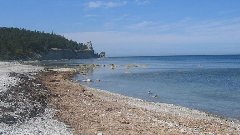 kust och hav på Gotland
