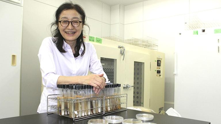 Mikrobiologen Atsuko Matsumoto vet hur man ska få bakterierna att trivas i odlingarna.