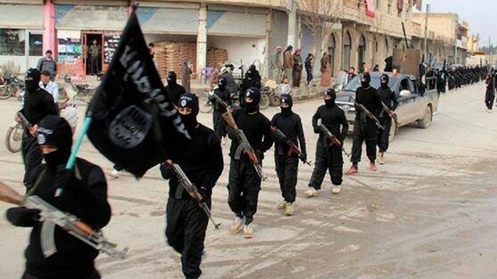 jihadister med flagga Foto: AP