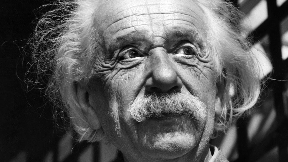 Albert Einstein. Foto:TT