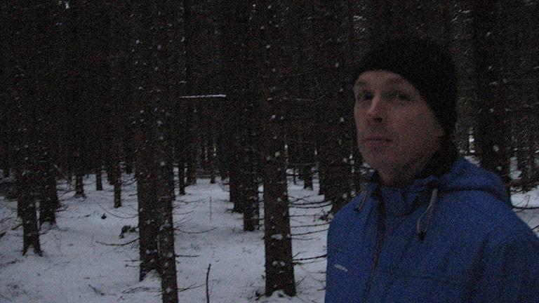 Snö på marken, granstammar, tätt mörkt grenverk. professor Torgny Näsholm i svart toppluva och kornblå täckjacka