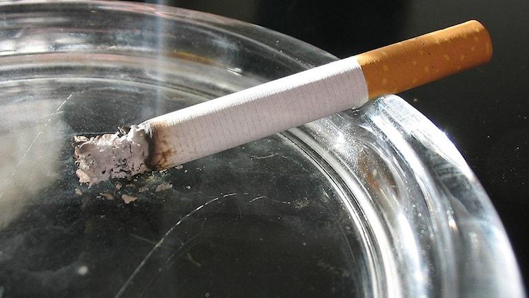 Cigarettrökning kan leda till lungcancer. Foto: Tomasz Sienicki/Wikimedia commons CC BY-SA 3.0