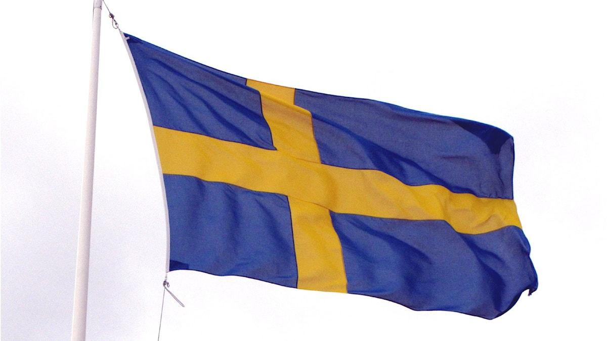 Svenska flaggan. Foto:  Petey21/Wikimedia commons Public Domain
