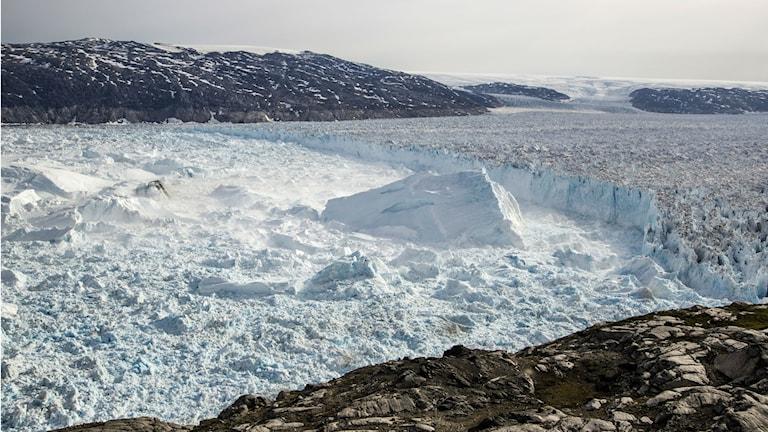 Isberg och kalvningsfront vid en av Grönlands många glaciärtungor. Foto: Nicolaj Krog Larsen/Aarhus universitet