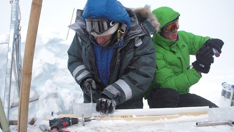 Forskare jobbar med borrkärnor av is på Grönland.